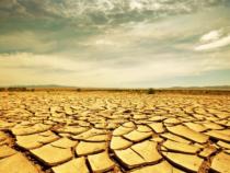 tierra-mala-como-obtener-resultados-masivos-este-año